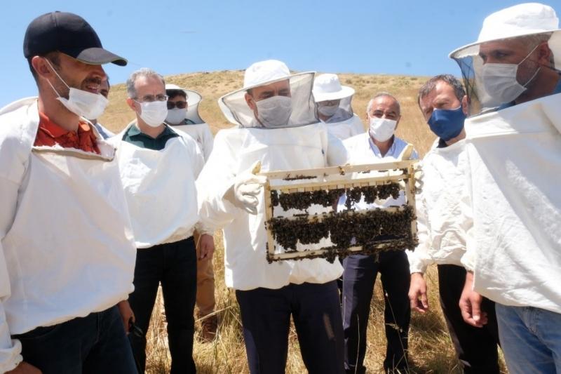Ana Arı Yetiştiriciliği Kursunda Uygulamalı Eğitim Verildi