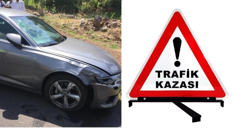 Aracın Çarptığı Kadın Hayatını Kaybetti