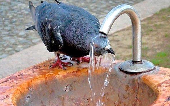 Aşırı Sıcaklardan Korunmanın Yolları
