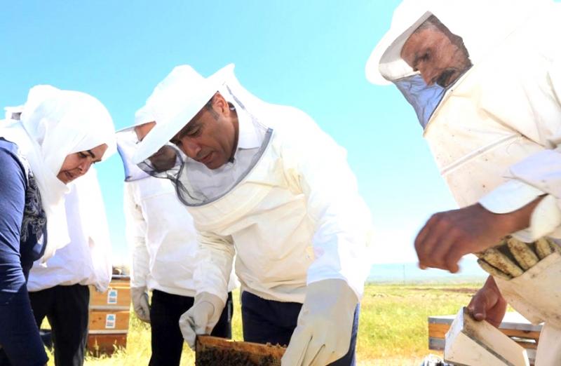 Bal Üretiminde Yüzde 56 Artış Sağlandı