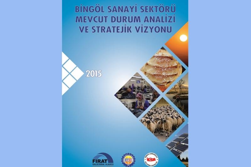 Bingöl sanayi sektörlerinin stratejik vizyonu belirlendi