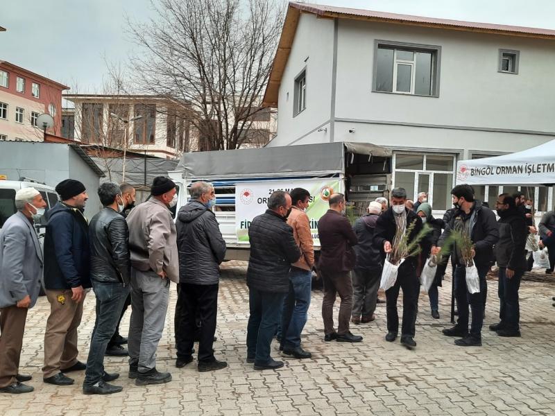 Bingöl'de Vatandaşlara 5 Bin Fidan Dağıtıldı