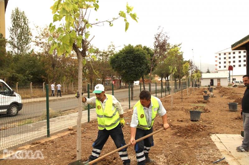 Bingöl'deki Millet Bahçesi'ne 2 Bin Ağaç Dikilecek
