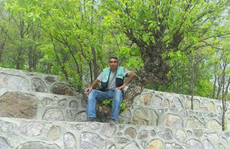 Elektrik Direğinden Düşen Erimez, Ağır Yaralandı