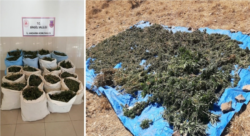 Genç İlçesinde 388 Kilo Esrar Yakalandı