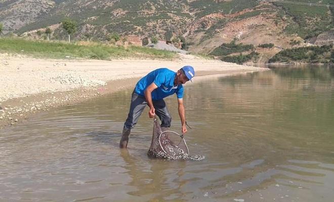 Kalehan Barajına 200 Bin Yavru Balık Bırakılacak