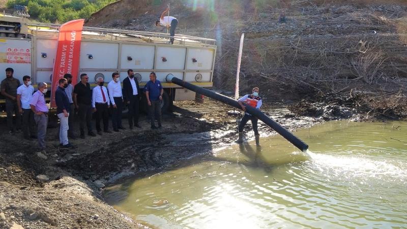 Kaleköy Baraj Gölüne Yavru Sazan Bırakıldı