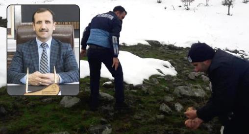 Solhan Belediyesi Tarafından Doğaya Yem Bırakıldı