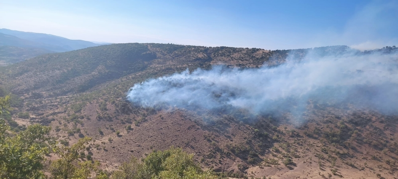 Solhan'da 2 Ayrı Noktada Orman Yangını